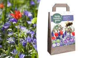 Mix van 80 bijenvriendelijke bloembollen