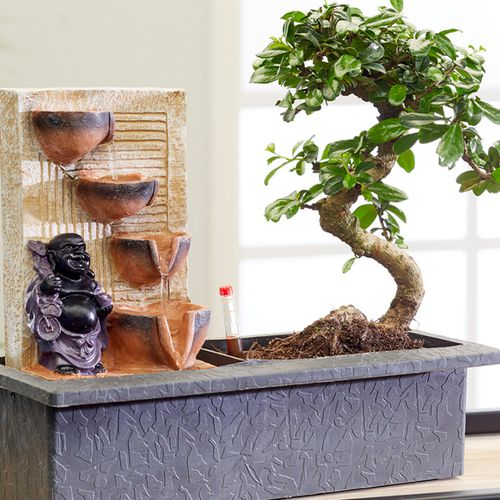 Bonsaiboom met waterval en verlichting