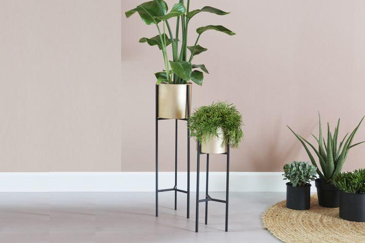 2 gouden plantenbakken van VELYON (model: Sevilla)