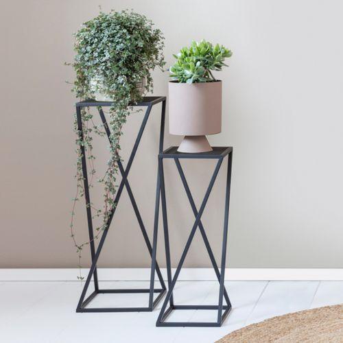 2 zwarte plantenstandaarden