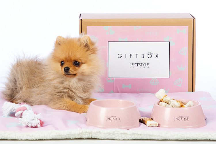 Puppy-cadeaupakket (roze)