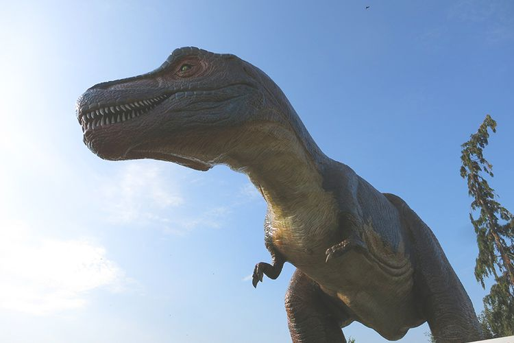 All-inclusive dagje weg in DinoPark Tenaxx (2 p.)