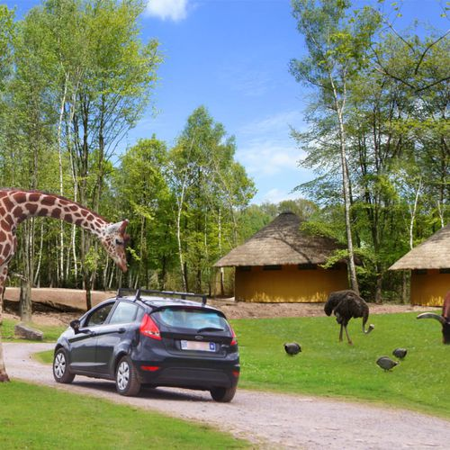 Tickets safaripark Monde Sauvage vlakbij Spa, BE (2 p.)